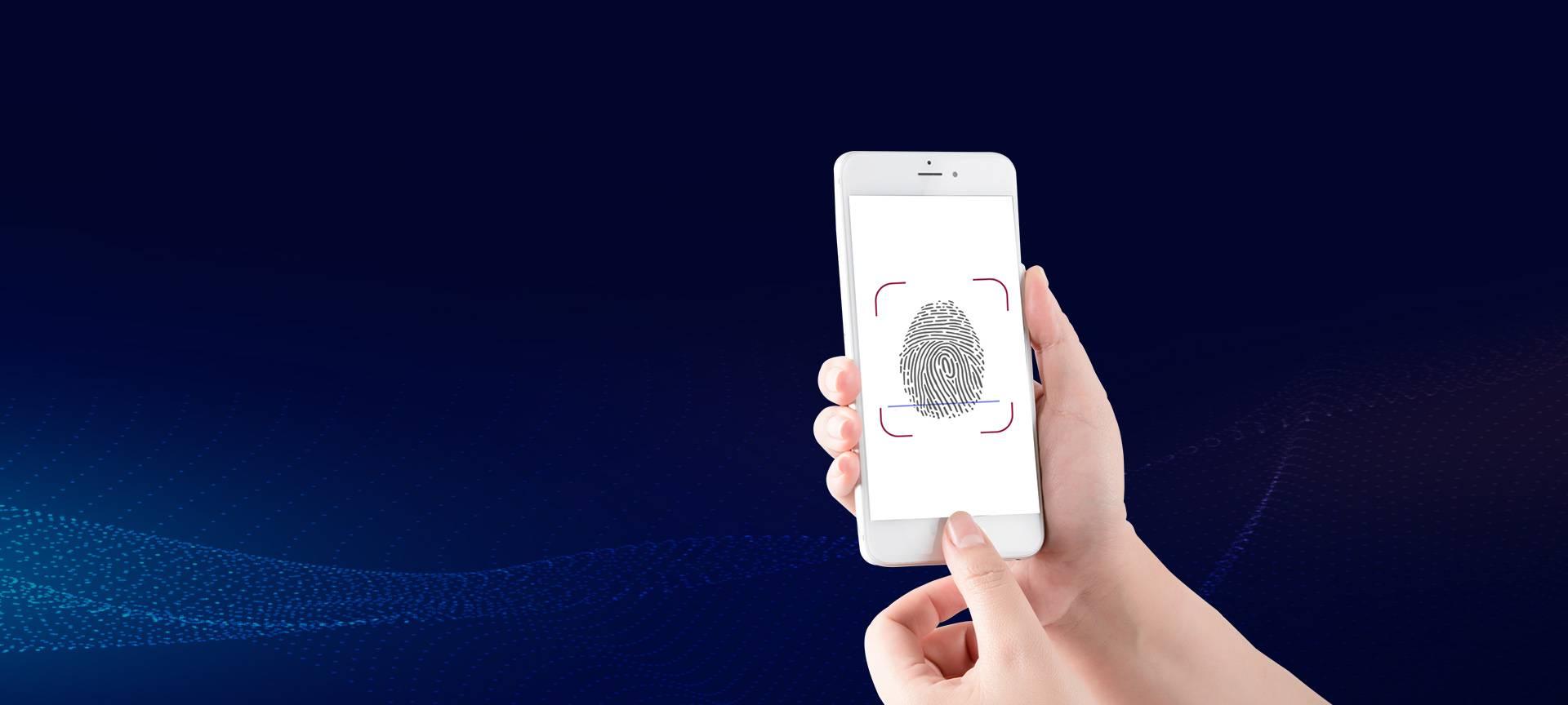 Fingerprint identification module products